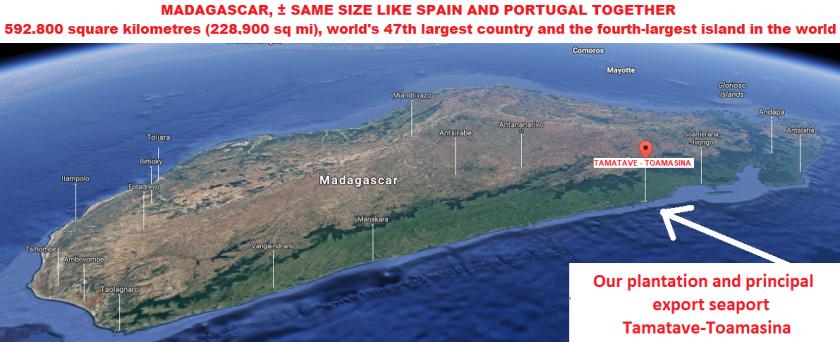 LOGO MAP 3D